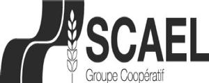 logo-scael-nb
