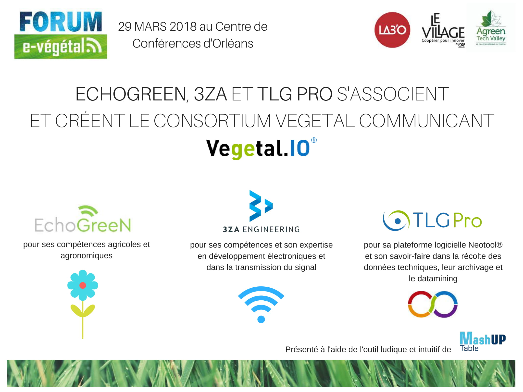 VEGETAL IO - TLG Pro
